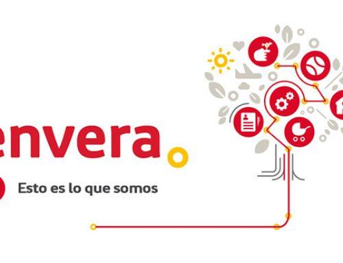 Grupo Envera selecciona a Brucke para el mantenimiento de SAP Successfactors